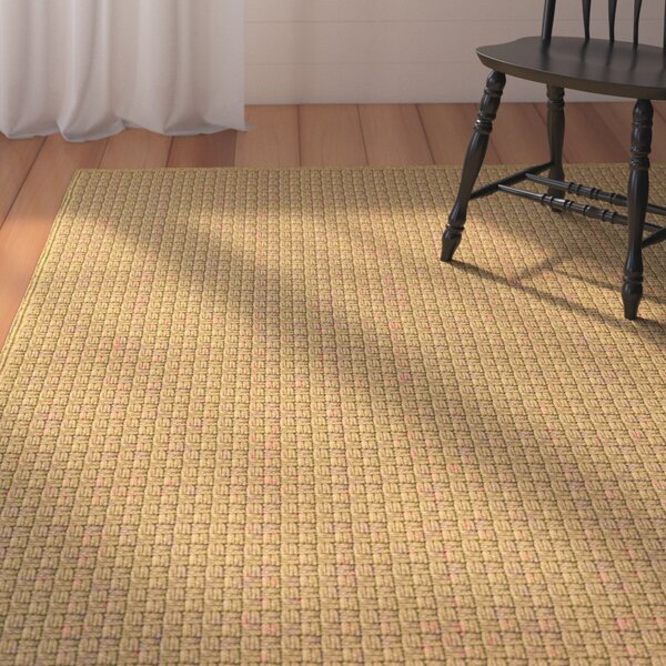 Camella Hand Woven Brown Indoor/Outdoor Area Rug by August Grove