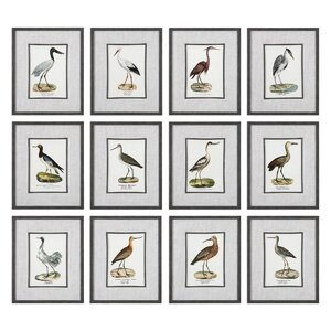'Seashore Birds' 12 Piece Framed Graphic Art Set by Rosecliff Heights