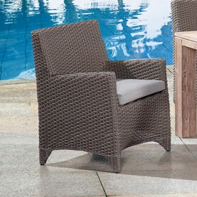 Pleasant Avenue Patio Dining Chair with Cushion (Set of 2) by Rosecliff Heights