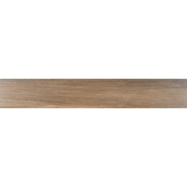 Acacia Valley 6 x 36 Porcelain Wood Look Tile in Ark by Daltile