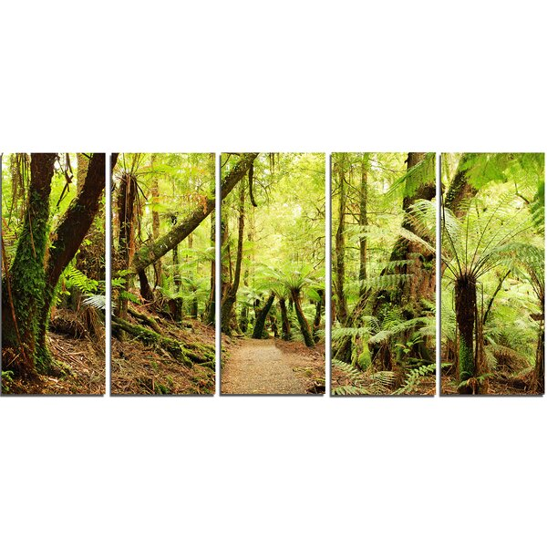 Rainforest Panorama 5 Piece Photographic Print on Wrapped Canvas Set by Design Art