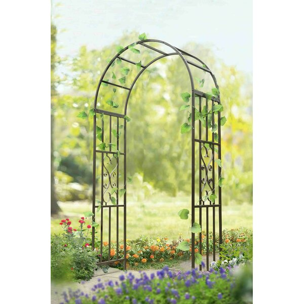 Arenzville Steel Arbor by Darby Home Co