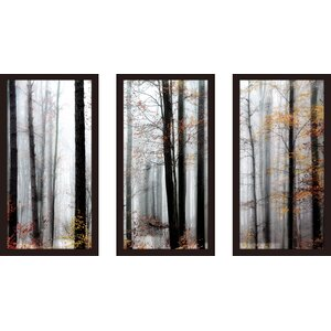 'Daylight Enraptured' Framed Photographic Print Multi-Piece Image on Glass by Red Barrel Studio