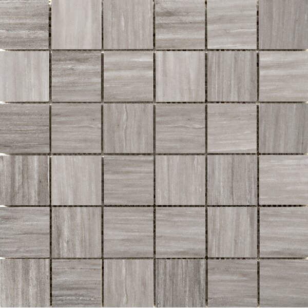 Latitude 2 x 2 Porcelain Mosaic Tile in Taupe by Emser Tile