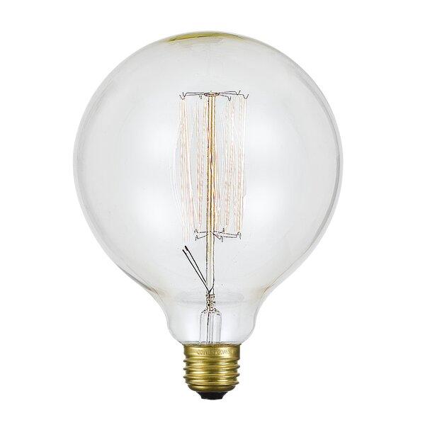 60W E26 Incandescent Edison Globe Light Bulb by Cal Lighting