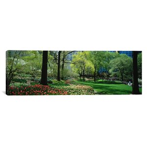 Panoramic Trees in a Park, Central Park, Manhattan, New York City, New York State Photographic Print on Wrapped Canvas by iCanvas