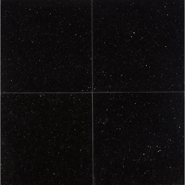 Galaxy 12 x 12 Granite Field Tile in Black by MSI