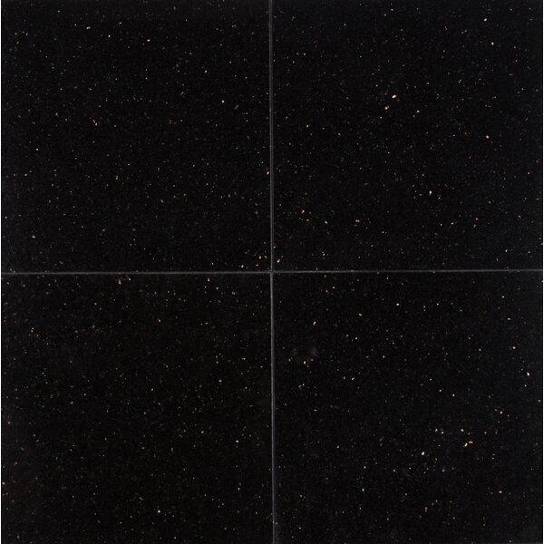 Galaxy 12 x 12 Granite Field Tile in Black by MSI