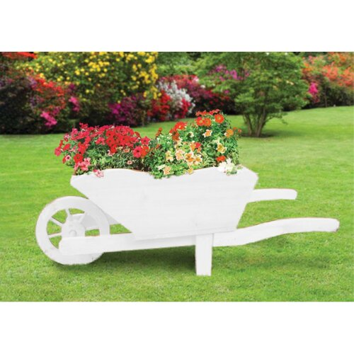 Pickens Wood Wheelbarrow Planter August Grove Colour:
