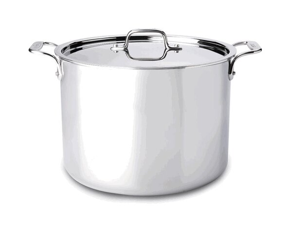 D3 Stock Pot with Lid by All-Clad