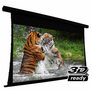Electric Projection Screen Elunevision