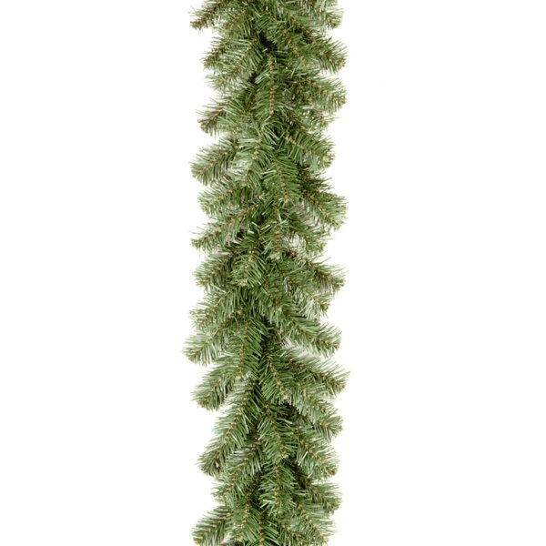 Kincaid Spruce Garland by Ebern Designs