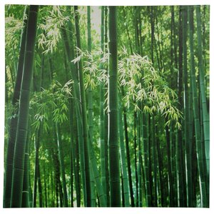 Bamboo Photographic Print on Wrapped Canvas by Oriental Furniture