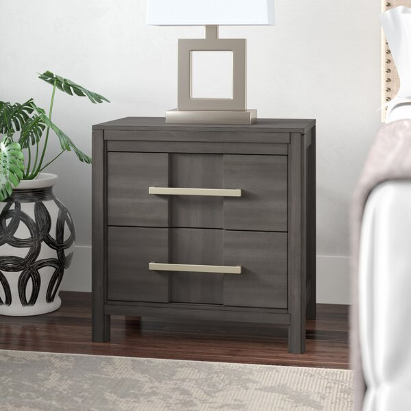 Alona Transitional 2 Drawer Nightstand by Latitude Run