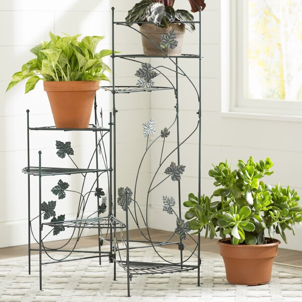 Heathcote Climbing Vines Multi-Tiered Plant Stand by Alcott Hill