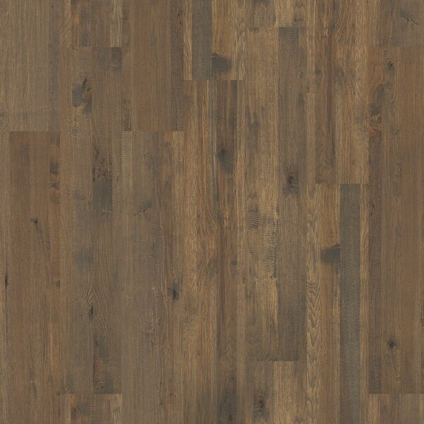 Ridge 8 Solid Hickory Hardwood Flooring in Early by Shaw Floors
