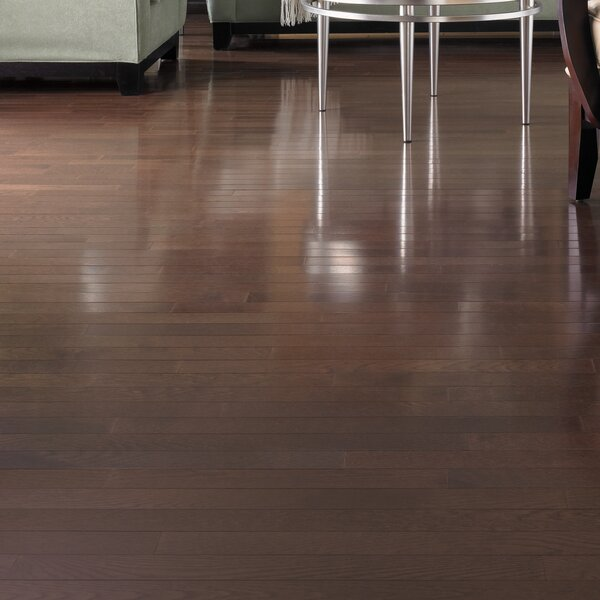 Color Strip 3-1/4 Solid Oak Hardwood Flooring in Metro Brown by Somerset Floors