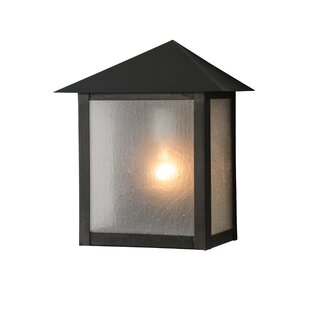 Searching for 1-Light Outdoor Flush Mount By Meyda Tiffany