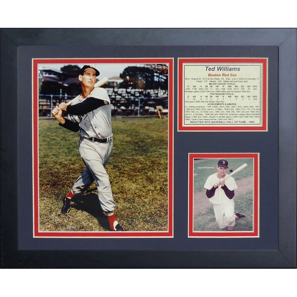 Ted Williams Framed Memorabilia by Legends Never Die