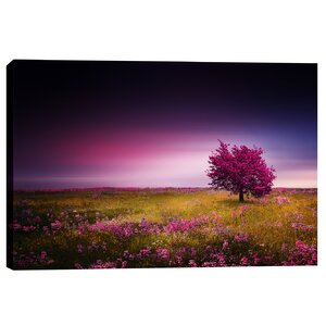 Pink Nights by Bess Hamiti Photographic Print on Wrapped Canvas by Epic Graffiti
