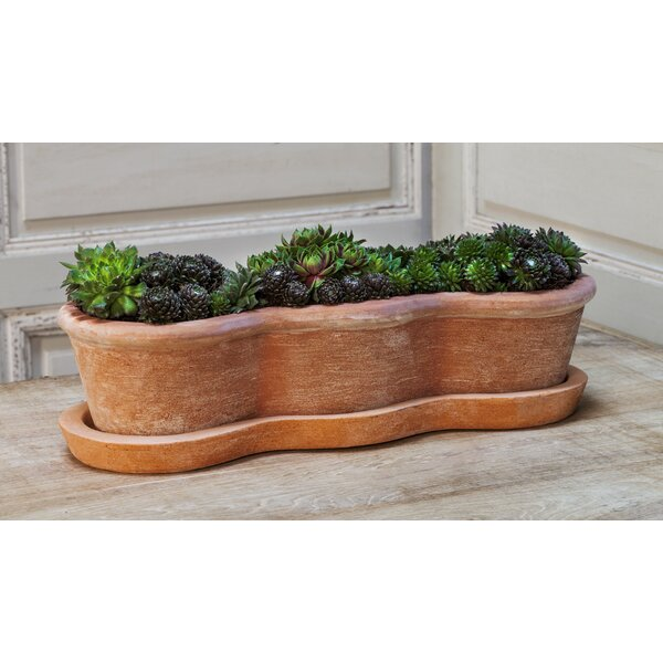 Cocchia Terracotta Pot Planter by Red Barrel Studio