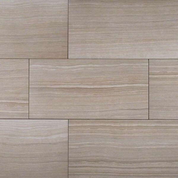 Eramosa 12 x 24  Porcelain Wood Look/Field Tile in Silver by MSI