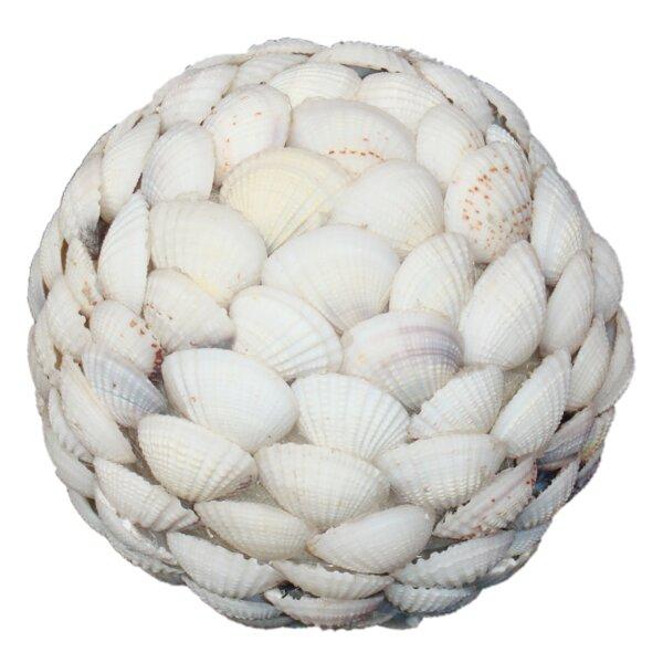 Clam Shell Ball by BIDKhome