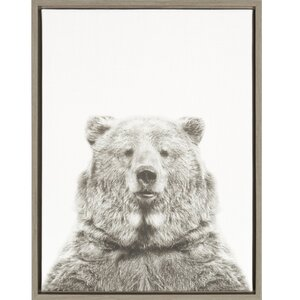 'Bear Portrait' Framed Photographic Print on Wrapped Canvas by Ivy Bronx