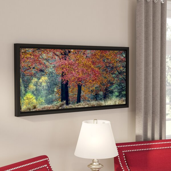 Autumn Glow Framed Photographic Print on Wrapped Canvas by Alcott Hill