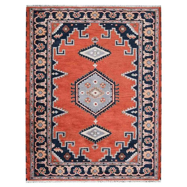 Pointer Afghan Hand-Woven Pink/Blue Area Rug by Loon Peak