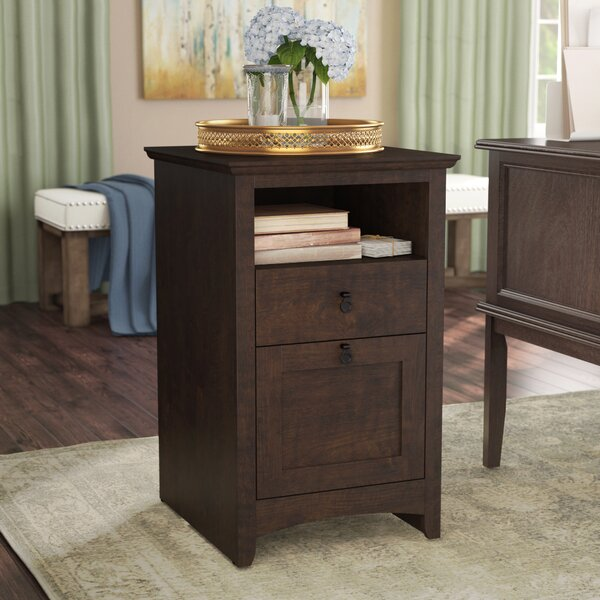 Fralick 2-Drawer Vertical Filing Cabinet by Darby Home Co