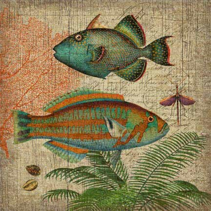 Natural History 2 Wall Art by Graphic Art Plaque by Bay Isle Home