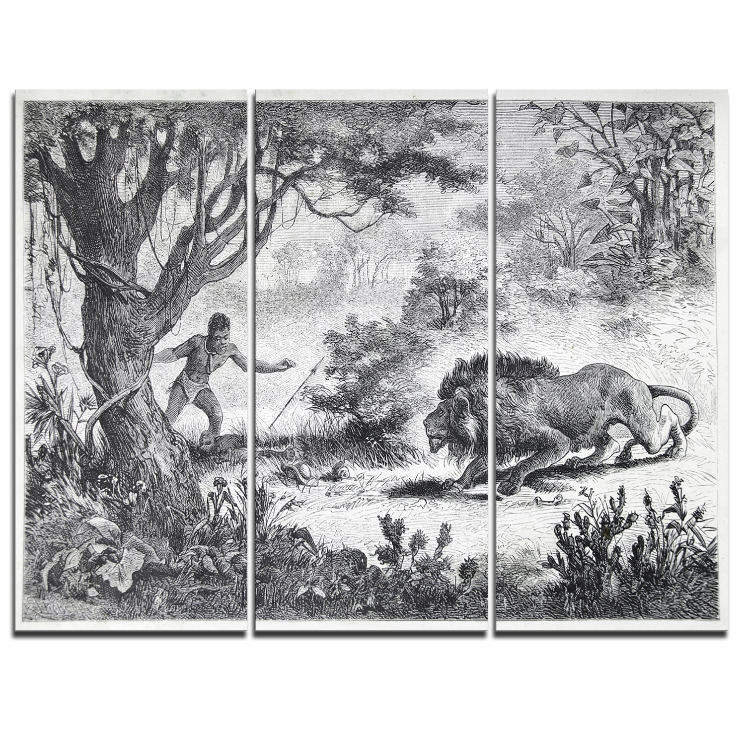 Designart Lion Eating Man 3 Piece Graphic Art On Wrapped Canvas Set Wayfair