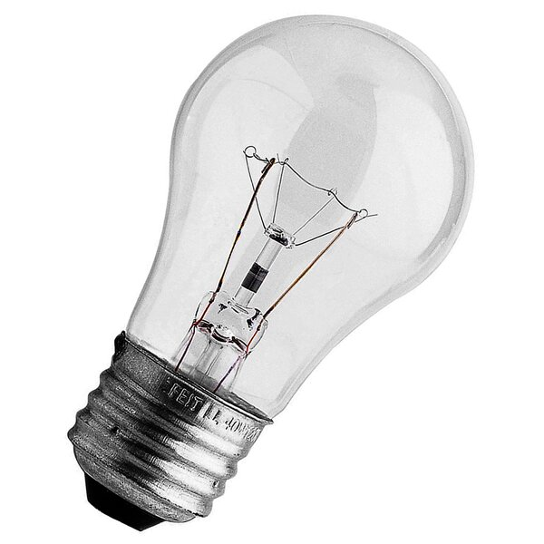 40W 120-Volt Incandescent Light Bulb (Pack of 2) by FeitElectric