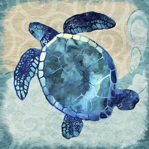 Blue Swimming Turtle' Graphic Art Print on Canvas by Beachcrest Home