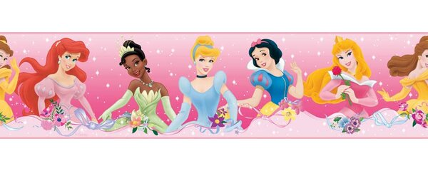 Disney Princess Dream From the Heart Room Border Wall Mural by Wallhogs