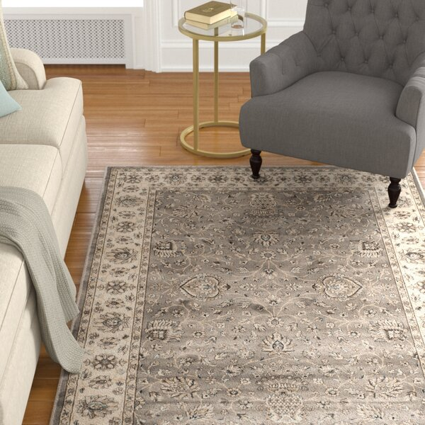 Hewitt Grey/Ivory Area Rug by Alcott Hill