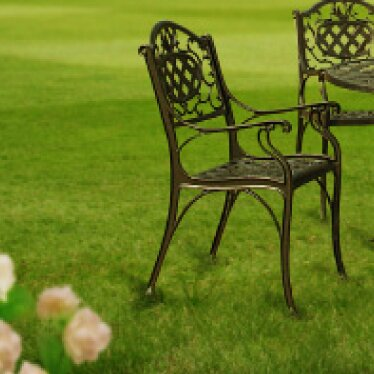 Cambridge Patio Dining Chair by Innova Hearth and Home
