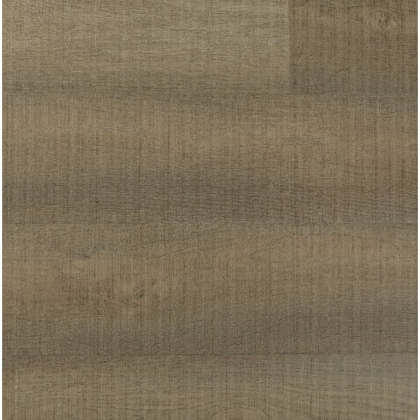 Chatman 4.75 x 48 x 12mm Oak Laminate Flooring in Amber by Serradon