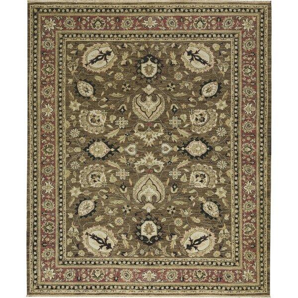 One-of-a-Kind Sumak Handwoven Wool Brown/Beige Indoor Area Rug by Bokara Rug Co., Inc.