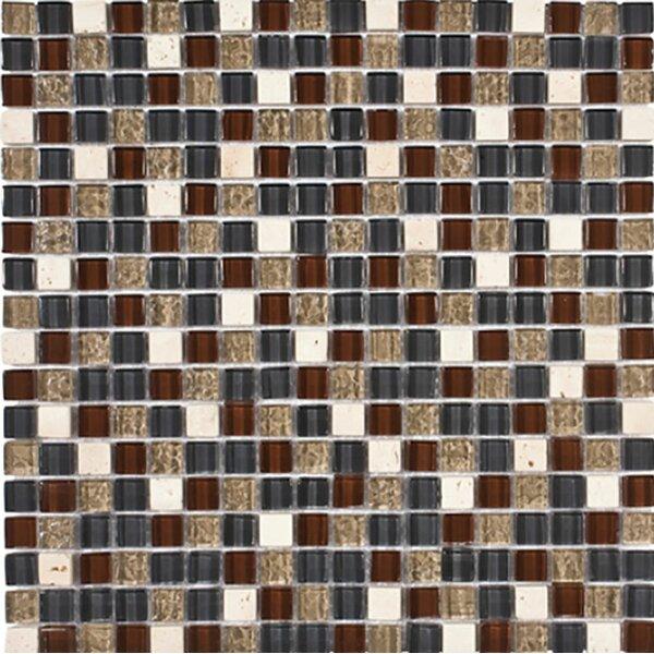 Oxnard 0.625 x 0.625 Glass Mosaic Tile by Parvatile
