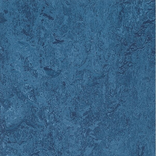 Marmoleum Click Cinch Loc 11.81 x 11.81 x 9.9mm Cork Laminate Flooring in Blue by Forbo