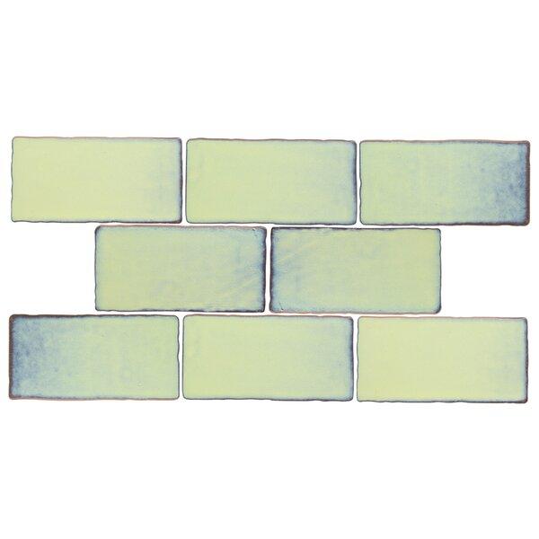Antiqua 3 x 6 Ceramic Subway Tile in Special Aguamarina by EliteTile