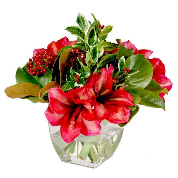 Amaryllis Holiday Bouquet Mixed Centerpiece in Glass Vase by Jane Seymour Botanicals