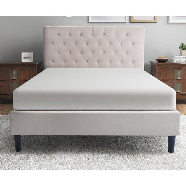 Colby Lane Upholstered Platform Bed by Red Barrel Studio