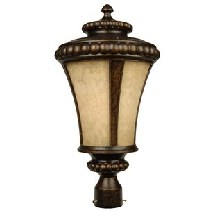 Find a Oakhill Outdoor 1-Light Lantern Head By Charlton Home