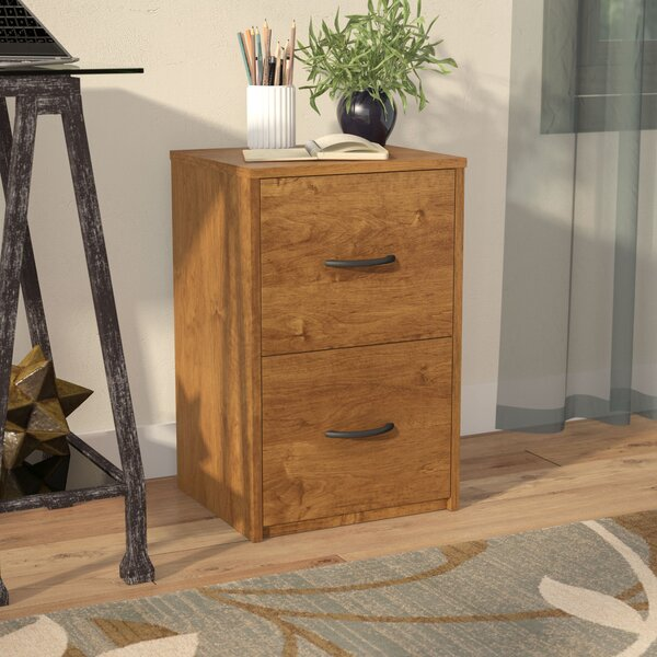 2 Drawer File Cabinet by Symple Stuff