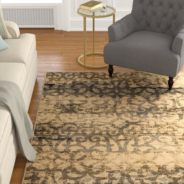 Coleta Beige Area Rug by Darby Home Co