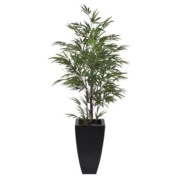Artificial Black Bamboo Tree in Planter by House of Silk Flowers Inc.