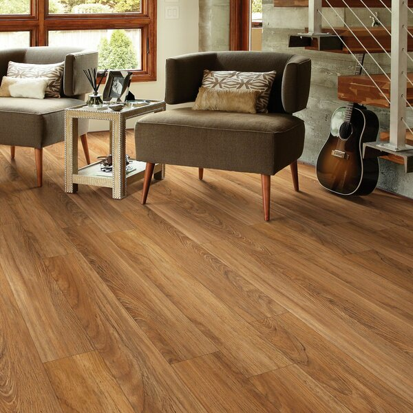Stately Charm 6 x 48 x 6.5mm Vinyl Plank in Resplendent by Shaw Floors